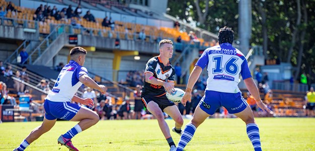 Wests Tigers and Bulldogs split points in Jersey Flegg