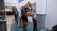 Timmy the Tiger visits the Children's Hospital at Westmead