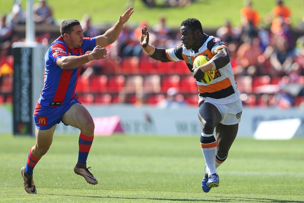 Competition - NYC Premiership Round - Round 06 Teams - Newcastle Knights v Wests Tigers - 10th of April 2016 Venue - Hunter Stadium, Broadmeadow NSW, Photographer - Paul Barkley